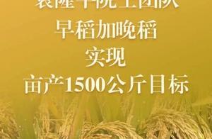 得知破纪录,袁隆平连飙英语!网友:超可爱