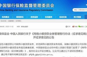 网络小贷新规来了 两部门:贷款不得用于买房炒股