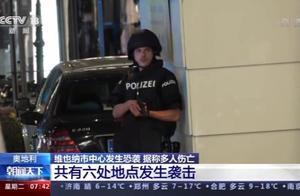 维也纳6处地点发生恐袭!多名全副武装袭击者在逃