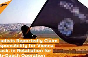 """俄媒:""""圣战者""""宣称对维也纳袭击事件负责,目的是报复奥地利"""