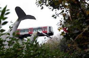 """荷兰城轨列车脱轨 幸获鲸鱼雕像""""托举"""""""