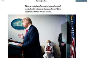 美国疫情到哪个阶段了?白宫抗疫专家:最致命阶段