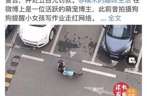 深圳网红狗狗未牵绳外出被罚500元,深圳城管:犬只外出必须由成年人牵领