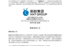 蚂蚁集团A股H股双双暂缓上市,阿里巴巴集团回应