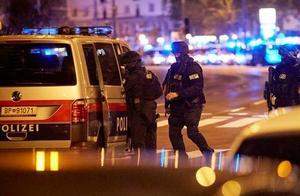 维也纳恐袭已致4人遇难,1名中国公民受轻伤,奥地利全国哀悼3天