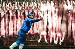 国家统计局:十月下旬生猪价格29.2元/千克,环比降3%