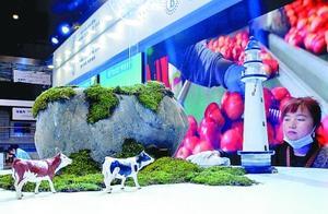 """""""开放合作是进博会的灵魂""""——第三届中国国际进口博览会开幕"""
