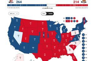 美国大选高投票率背后,是整个社会焦虑感急剧增加,当选方最大的挑战,只会是在大选之后