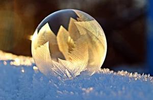 今日立冬,朔风起,万物藏,记得多吃三白、三红