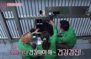 """韩国动物园、艺人方回应""""违规接触熊猫幼崽"""":防疫严格 节目停播"""