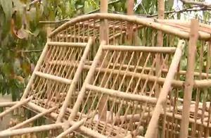 潍坊寿光市:多部门联合开展打击非法捕鸟行动
