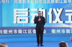 """这才叫""""盒区""""!衢州3个月建起全国最大""""盒马村"""""""