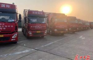 """武汉""""接羊""""车队抵达河北邯郸"""