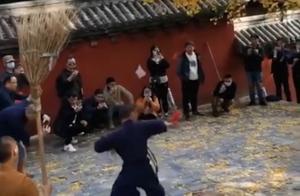 两男子为录视频拍打千年银杏树,少林寺称不许触碰,网友看法不一