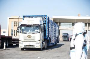 都来啦!最后一批1800只蒙古国捐赠羊抵达中国