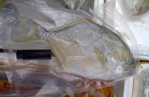 济南一冷库进口冷冻食品核酸检测呈阳性,物流园已被封闭