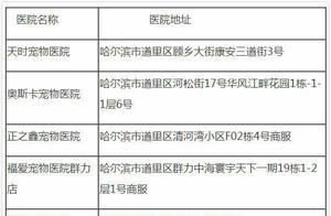 哈尔滨城区内禁养这39种烈犬,中华田园犬在列