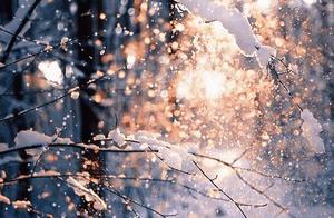 @太原人,雨、雪、风要来了!冷҈空҈气҈动҈真҈格҈
