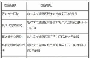 哈尔滨城区禁养39种烈犬,中华田园犬、苏牧都不行