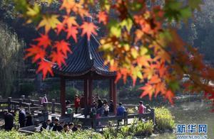 南京:栖霞红叶醉游人