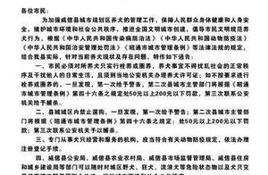 云南一地禁止遛狗,违反三次将捕杀?官方回应了