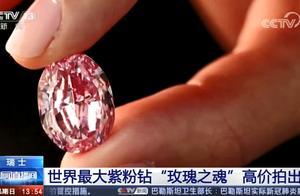 世界最大紫粉钻石卖出1.76亿元,样子曝光!网友:越稀有越珍贵