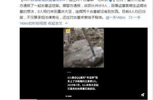 8人因看剧组团盗墓被抓,连挖两个古墓都一无所获,网友:剧里说文物上交国家