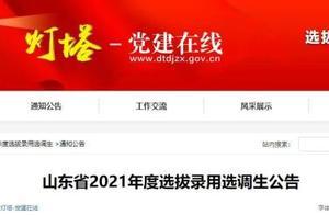 青岛计划选调97名!山东发布2021年度选拔录用选调生公告