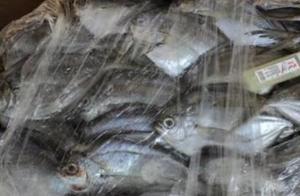 福州2份进口冷冻鲳鱼外包装阳性:已封存,未流入市场