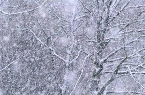 中央气象台发布今年首个暴雪橙色预警