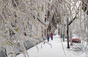 2020长春入冬的第一场雪