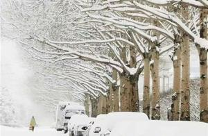 黑龙江迎大范围强降雪 暴雪应急响应等级升至二级