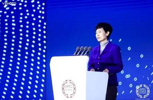 """中国贸促会会长高燕:加快形成21世纪""""数字丝绸之路"""",激发亚太经济活力"""