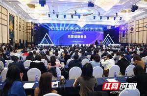 """2020中国新媒体大会丨新媒体时代,""""国奖""""爆款是如何打造的?"""