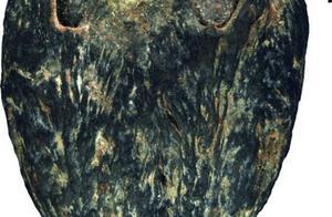 """中美学者发现1500万年前""""木乃伊""""南酸枣化石"""