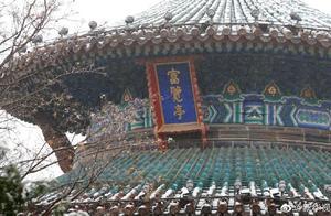 下雪了!北京下雪有几种打开方式