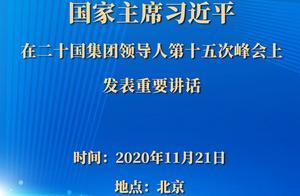 国家主席习近平在二十国集团领导人第十五次峰会上发表重要讲话