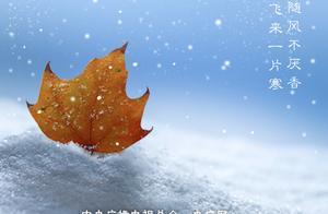 今天,小雪来了