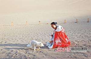"""月牙泉边,一只白狐频频来""""打卡""""景区讲解员赵素玲讲述她与""""素素""""的奇妙缘分"""