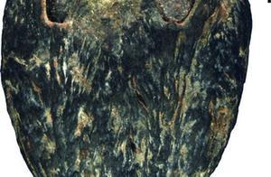 中美学者发现1500万年前的枣