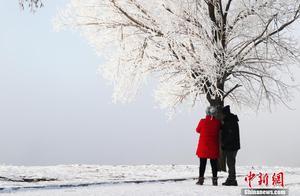 """中国""""雾凇之都""""现今冬首场雾凇"""