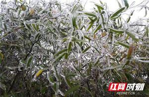 气象专家有话说丨这么冷的天,湖南莫非要下雪了?