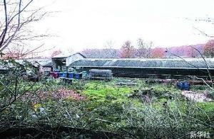 法国一养殖场发现水貂感染新冠病毒