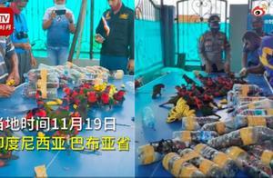 74只珍稀鹦鹉被塞进塑料瓶走私 鹦鹉被塞进塑料瓶照片曝光好残忍