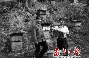 梅州4万人脱贫背后的广州力量