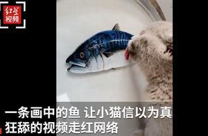 """""""铲屎官""""你过分了!小伙在胶水里画金鱼骗过猫咪,舔盘子的画面逗笑网友"""