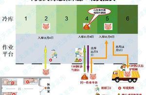 天津疾控中心:海联冷库感染来源为北美进口猪头
