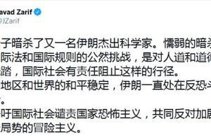 伊朗科学家遭暗杀,伊朗外长扎里夫用中文发推:呼吁国际社会谴责国家恐怖主义