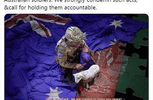 """赵立坚的置顶推特,令澳大利亚总理""""跳脚""""?华春莹回应了"""