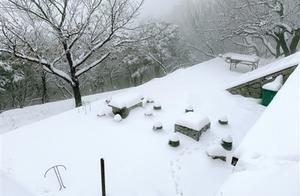 初雪郑州 温暖有你